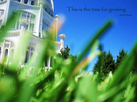 timeforgrowing